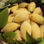 Лимончетата, които обожавам! Съблазнителни дребни сладки с апетитен пълнеж!