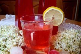 Цвят, който завладява и вкус, който пристрастява! И всичко това в една удивителна домашна напитка!